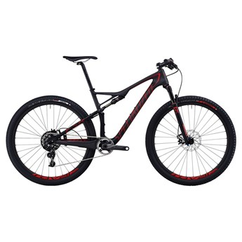 Specialized Epic FSR Expert Carbon WC 29 Materialfärg/Röd