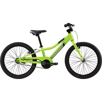 Cannondale Trail 20 Single-Speed Boys Berserker Green with Jet Black and Stealth Grey, Gloss