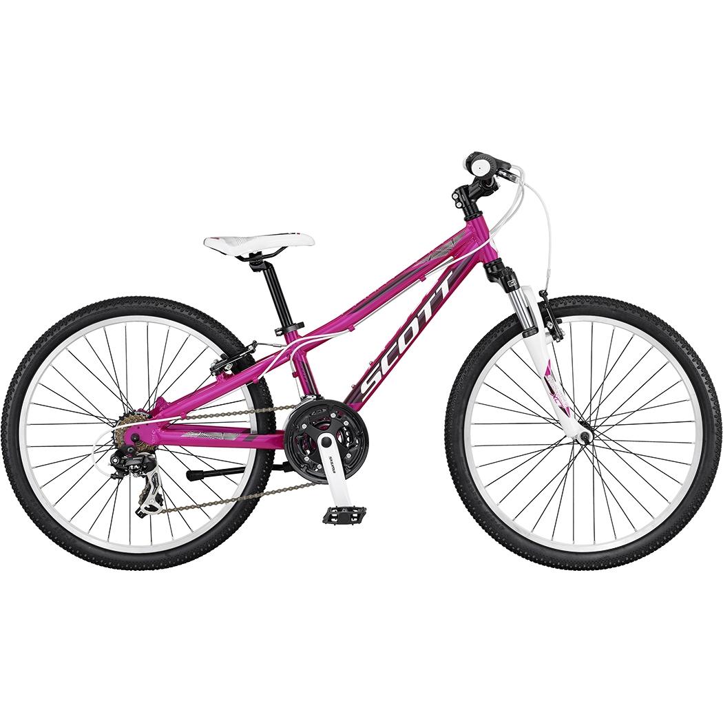 scott cykel dam