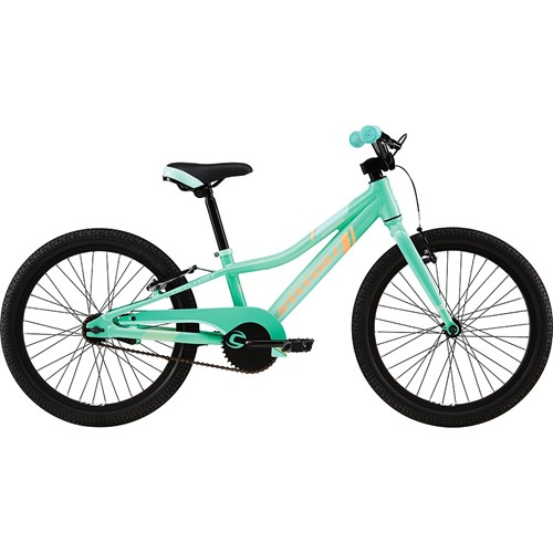 Cannondale Trail 20 Single-Speed Girl's Tro 2016